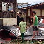 2013 Philippine Typhoon-thumb