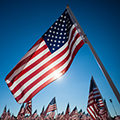 A Simple Expression of Gratitude: A Reflection on Veterans Day