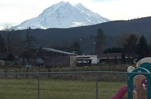 Orting inline